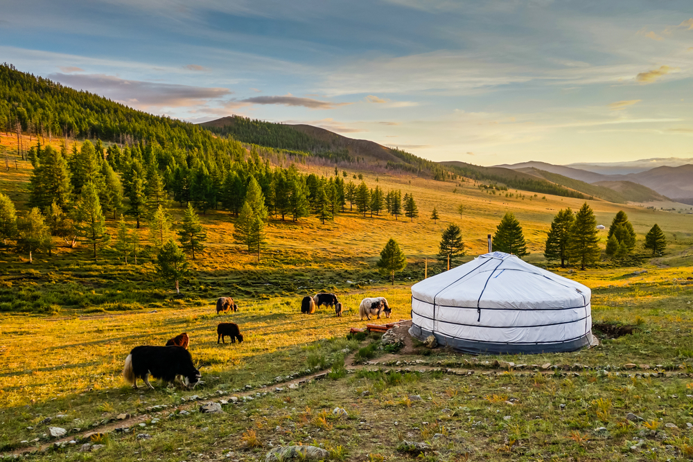 One week in Mongolia with kids