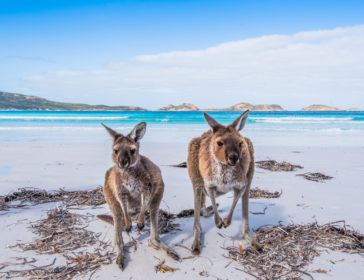 Best Places To Visit In Australia With Family